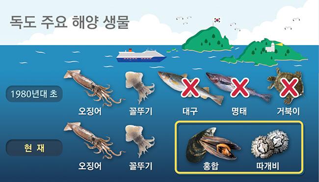 독도 주요 해양 생물 1980년대 초 오징어 꼴뚜기 대구X 명태X 거북이X, 현재 오징어 꼴뚜기 홍합 따개비