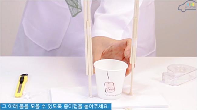 그 아래 물을 모을 수 있도록 종이컵을 놓아주세요.