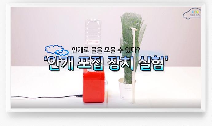 안개로 물을 모을 수 있다? 안개 포집 장치 실험