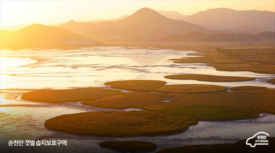 순천만 갯벌 습지보호구역