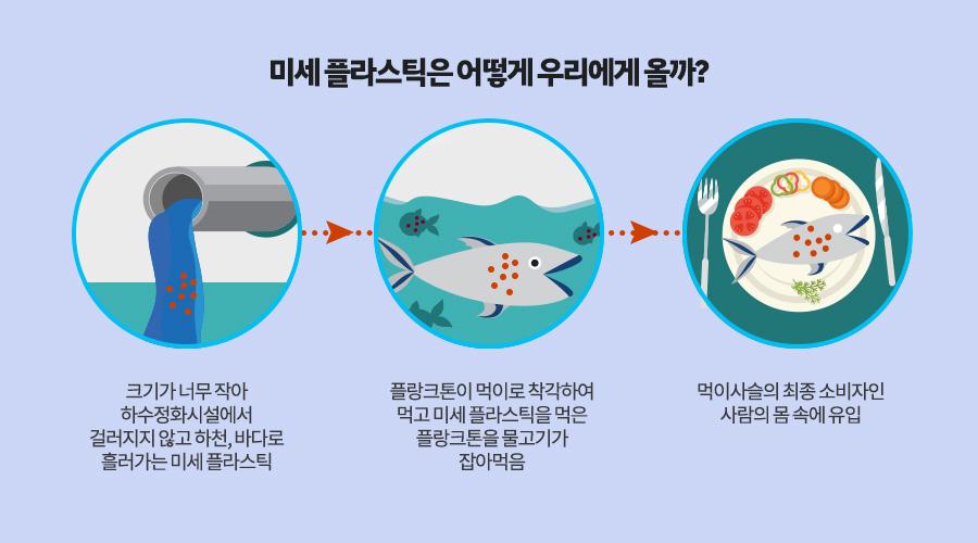 미세 플라스틱은 어떻게 우리에게 올까? 1 크기가 너무 작아 하수정화시설에서 걸러지지 않고 하천, 바다로 흘러가는 미세 플라스틱 2 플랑크톤이 먹이로 착각하여 먹고 미세 플라스틱을 먹은 플랑크톤을 물고기가 잡아먹음 3. 먹이사슬의 최종 소비자인 사람의 몸 속에 유입