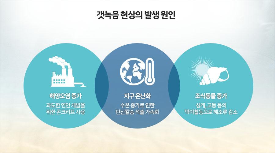 갯녹음 현상의 발생 원인 - 해양오염 증가: 과도한 연안 개발을 위한 콘크리트 사용- 지구 온난화 : 수온 증가로 인한 탄산칼슘 석출 가속화 -조식동물 증가 : 성게, 고둥 등의 먹이활동으로 해조류 감소