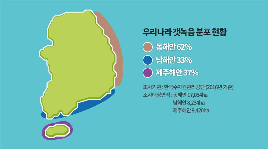 우리나라 갯녹음 분포 현황 동해안 62% 남해안 33% 제주해안 37% 조사기관 : 한국수자원관리공단(2016년 기준) 조사대상면적 : 동해안 17,054ha 남해안 8,234ha 제주해안 9,420ha